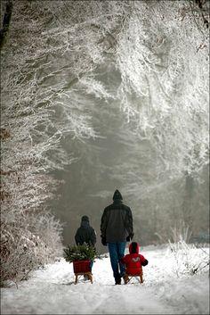 Fun - winter in Poland