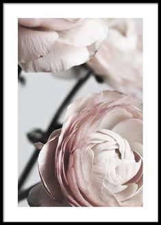 Here you will find floral prints and posters. Stylish posters with botanical prints of colorful plants. Buy botanical posters online from Desenio. Botanical Prints, Floral Prints, Poster Photo, Gold Poster, Art Deco Bedroom, 233, Online Posters, Colorful Plants, Art Et Illustration