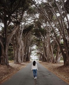 A weekend well spent in Pt Reyes