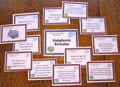Science Stuff Blog:  Cell Organelles Mix and Match Review Game will dramatically increase student retention of the cell organelles and their functions.
