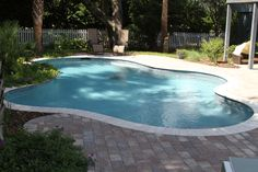 Free Form Swimming Pool Located on the Isle of Palms, SC