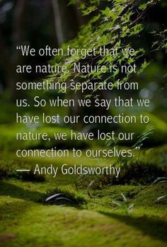 one with Nature quotes Great Quotes, Quotes To Live By, Me Quotes, Inspirational Quotes, Lost Quotes, Motivational Sayings, Super Quotes, Beauty Quotes, The Words