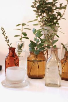 Amber glass bottles with greenery inside. Wedding Bottles, Wedding Vases, Wedding Table, Wedding Flowers, Plants In Bottles, Bottle Centerpieces, Amber Glass Bottles, Deco Table, Diy Party Decorations