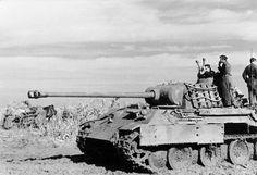 Bundesarchiv_Bild_101I-244-2321-34,_Ostfront-Süd,_Panzer_V_(Panther).jpg (798×545)