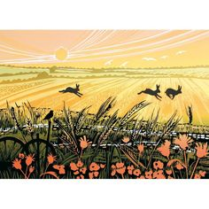 Printmaker Rob Barnes' studio looks out across the marshes and fields, where he finds much of his inspiration: hares, birds and forest animals. Green Pebble has been publishing this supr Farm Art, Rabbit Art, Sgraffito, Beach Scenes, Gravure, Print Pictures, Hare, Printmaking, Art Prints