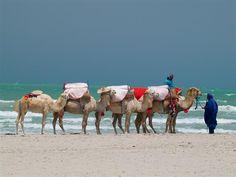 Tunisian Tourism – No Reasons to Be Optimistic