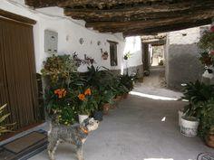 Mecinilla, Alpujarras, Granada