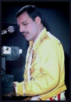 Freddie Mercury at the piano Brian May, John Deacon, Adam Lambert, Queen Rock Band, Mr Fahrenheit, Roger Taylor, Playing Piano, Queen Freddie Mercury, Killer Queen