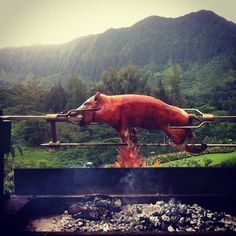 Lechon on the spit