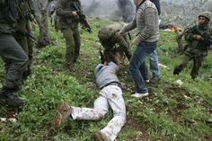 Filistinli gence köpekli işkence