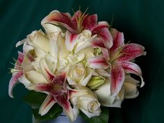 proflowers holiday lilies