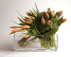 beautiful spring tulips!
