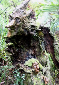 The most beautiful Fairy Garden in the world - Bruno's Art & Sculpture Garden in Australia Beautiful Fairies, Beautiful Gardens, Art Sculpture, Sculpture Garden, Metal Sculptures, Abstract Sculpture, Bronze Sculpture, Tree Faces, Tree Carving