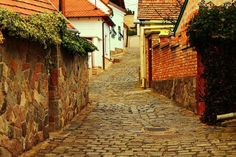 Szentendre Looks like the villages we visited In 1986 with Aunt Betty Amazing Places, Beautiful Places, Aunt Betty, Heart Of Europe, Bus, My Land, Travelogue, Best Memories, Budapest