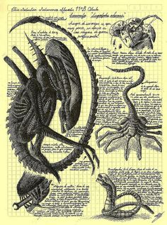 The Alien life cycle - Da Vinci style by Elkin Salamanca, via Flickr.