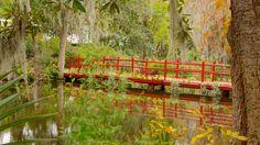 Magnolia Plantation and Gardens in Charleston, South Carolina | Expedia