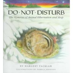 week two: animals in winter.... Do Not Disturb by Margery Facklam
