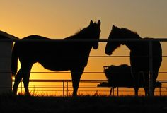 another Oklahoma sunset...