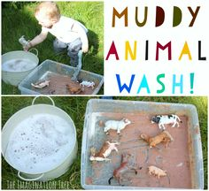 Create lots of fun for preschoolers and toddlers with this wash the muddy farm animals sensory play! This is a taste-safe play idea which makes it perfect for even the littlest explorer, and is wonderful when paired with a favourite farm story or song. Having children with a range of ages and stages of development...Read More »