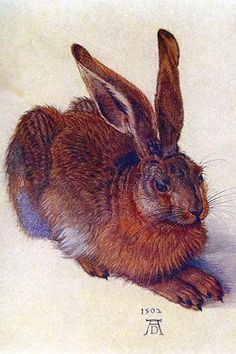 "Field Hare...painted with one paint bristol, in the year 1502 by ""Albert Durer"" from Germany. How Amazing!! Vickie"