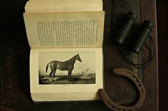 Rare Antique Horse Racing Book - The American Thoroughbred by Charles E. Trevathan - 1905, Equine Decor, For Horse Lovers, Sportsman Library by msjeannieology on Etsy