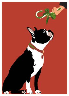 New Holiday Cards   ...........click here to find out more     http://googydog.com