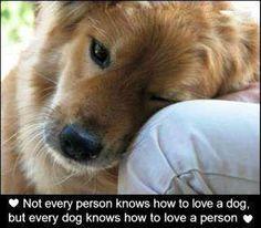 Unconditional Love..............