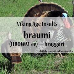 Viking Insults - Bing images