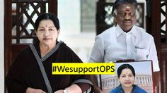 #WesupportOPS- OPS big revolt LATEST- Will OPS continue as TN CM?