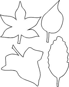 Leaf outlines