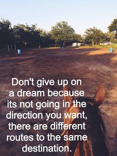 Don't give up on a dream because it's not going in the direction you want; there are different routes to the same destination.