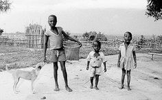 African children with basenji