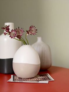 Diy, Laval, Images, Change, Home Decor, Colored Vases, Bicolor Cat, Search, Everything