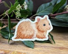 Golden Syrian Teddy Bear Hamster on Weatherproof Glossy Sticker Paper Height: Inches; Width: Inches Stickers are sold individually or in packs of 3 and 10 Product specs: Bear Hamster, Handmade Items, Handmade Gifts, Stickers, Sticker Paper, Teddy Bear, Colours, Specs, Creative