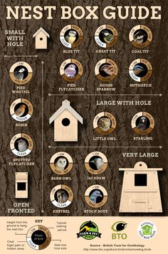 Nest Box Guide - Which Wild Birds Use Nest Boxes?You can find Nesting boxes and more on our website.Nest Box Guide - Which Wild Birds Use Nest Boxes?