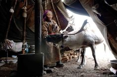 thehermitage:  Incredible Mongolian Nomad photography by Hamid Sardar