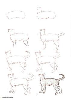 Katze Zeichnen Tutorial 978 32 ausmalbilder kostenlos