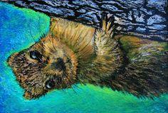 ScratchArt Squirrel   Artist Trading Card website for teachers