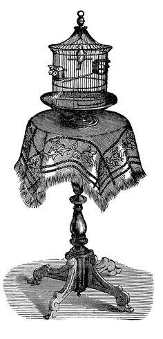 table+birdcage+vintage+image+graphicsfairy008.jpg (770×1600)