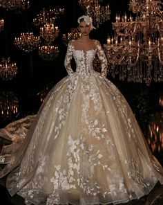 Plus Size Champagne Bridal Ball Gowns Wedding Dresses Long Sleeves Appliques Queen Wedding Dress, Amazing Wedding Dress, Luxury Wedding Dress, Long Wedding Dresses, Wedding Attire, Bridal Dresses, Wedding Gowns, Girls Dresses, Illusion Dress