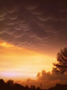Mammatus Clouds Cloud Type, Mammatus Clouds, Storm Pictures, Lots Of Cats, Tornados, Wild Nature, Gods Creation, Sky And Clouds, Shooting Stars