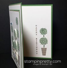 Stampin Up, Vertical Greetings, Birthday Card idea - Mary Fish, Stampinup