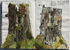 Found this through another pinner - gives me ideas :) Forest nature diary - keeping a nature sketchbook http://www.squidoo.com/forest-diary