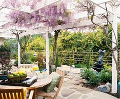 Pergola featuring climbing wisteria.