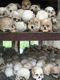 Hundreds of skulls that were found in mass graves in the Killing Fields just outisde of Phnom Penh Body Farm, Phnom Penh, Vietnam War, Skeletons, Laos, Skulls, Fields, History, Nature