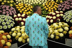 Week of May 17-23, 2014 An exhibitor looks at a stand of chrysanthemums Monday at the 2014 Chelsea Flower Show in London. Dan Kitwood/Getty Images