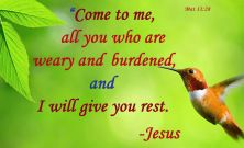 "Jesus said, ""Come to Me all who are weary and burdened and I wil give you rest"" -Matthew 11 28 
