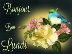 Bonjour, Bon Lundi #lundi fleurs oiseau