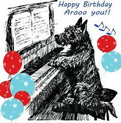 Arooo birthday to you Happy Birthday Dog, Birthday Wishes Funny, Birthday Bash, Friend Birthday, Birthday Greetings, Friday Humor, Funny Friday, Westies, Dachshunds