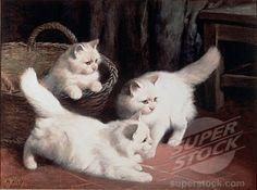Three White Angora Kittens Arthur Heyer (1872-1931 British)